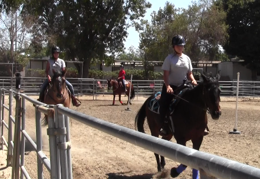 Girls learn basic barn manners before saddling up on the horses. (Vicki Chen/ATVN)